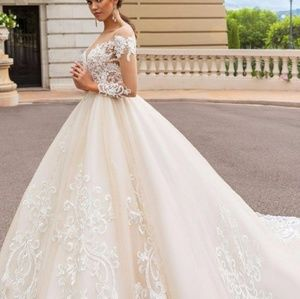 Dresses & Skirts - Gorgeous lace applique organza wedding gown